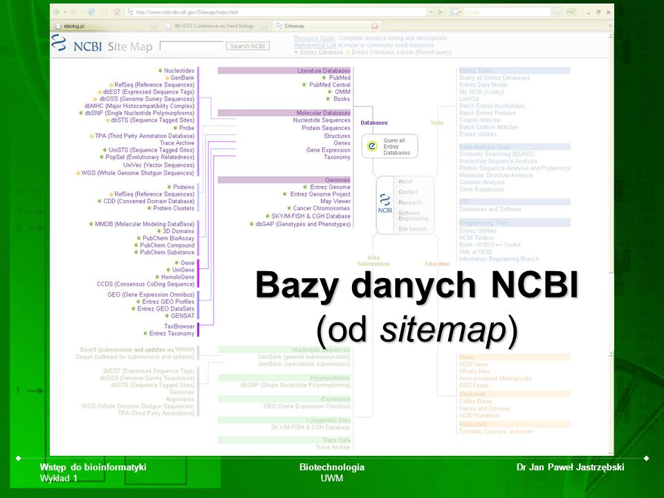 Wstęp do bioinformatyki Wykład 1 Biotechnologia UWM Dr Jan Paweł Jastrzębski Bazy danych NCBI (od sitemap)