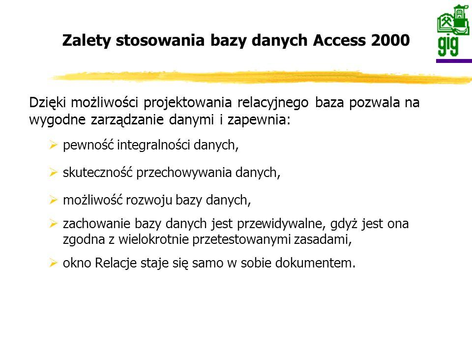 Baza danych ankietowych została zaprojektowana w programie Access 2000.