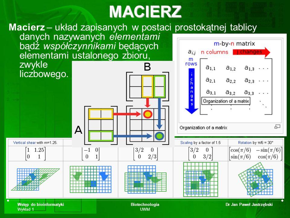 Wstęp do bioinformatyki Wykład 1 Biotechnologia UWM Dr Jan Paweł JastrzębskiMACIERZ Macierz – układ zapisanych w postaci prostokątnej tablicy danych n