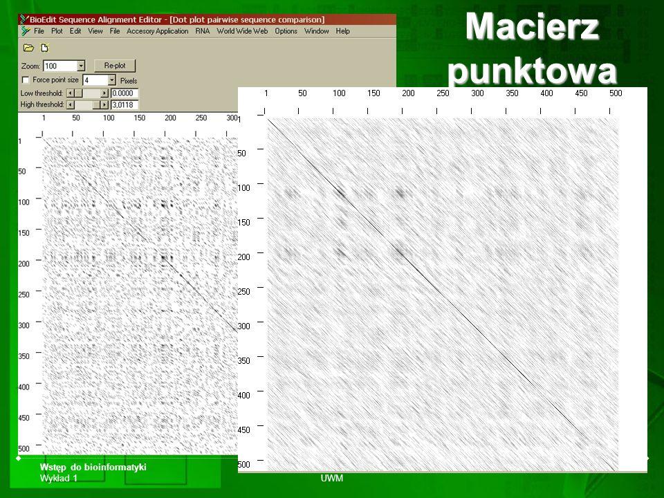 Wstęp do bioinformatyki Wykład 1 Biotechnologia UWM Dr Jan Paweł Jastrzębski Macierz punktowa