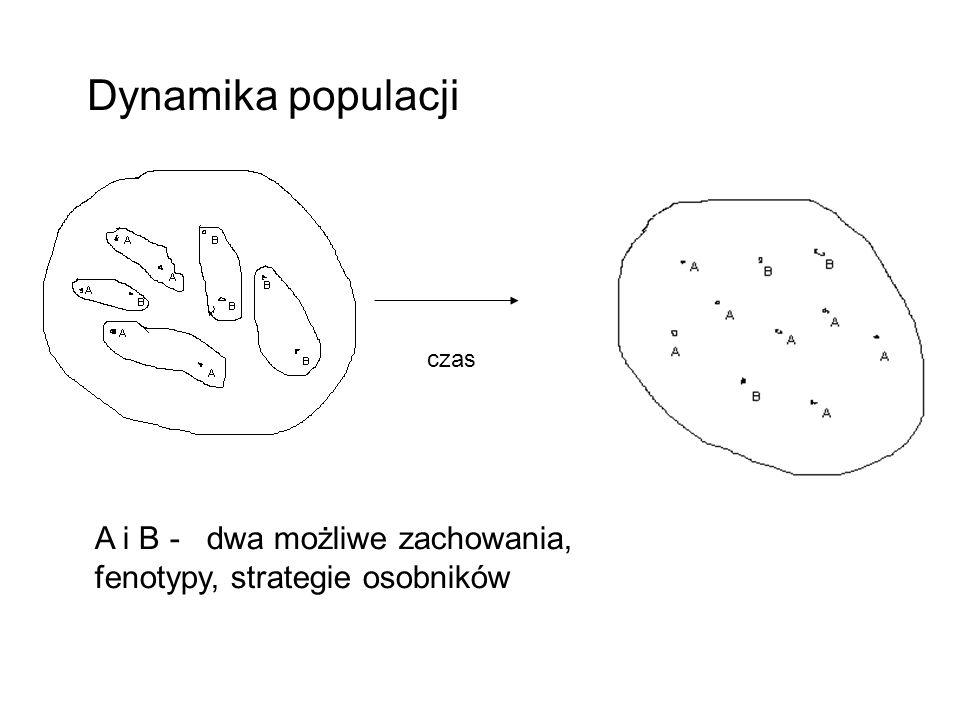 Dynamika populacji czas A i B - dwa możliwe zachowania, fenotypy, strategie osobników