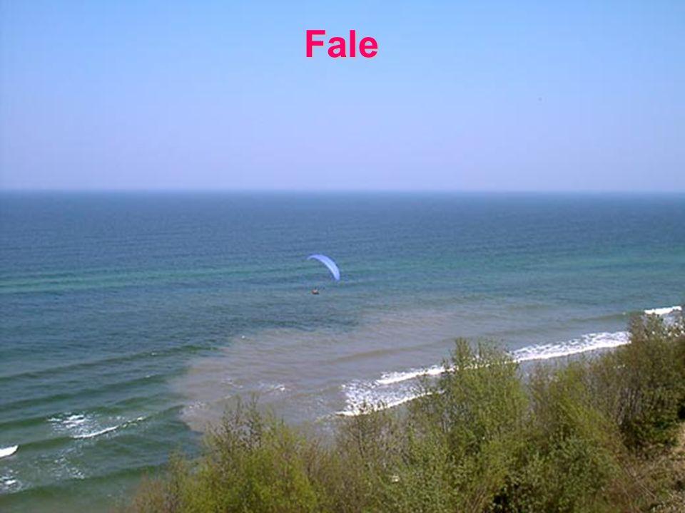 Obwiednia rozchodzi się z prędkością grupową.Fala nośna rozchodzi się z prędkością fazową.