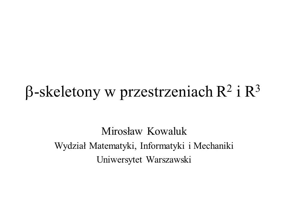 -skeletony w przestrzeniach R 2 i R 3 Mirosław Kowaluk Wydział Matematyki, Informatyki i Mechaniki Uniwersytet Warszawski