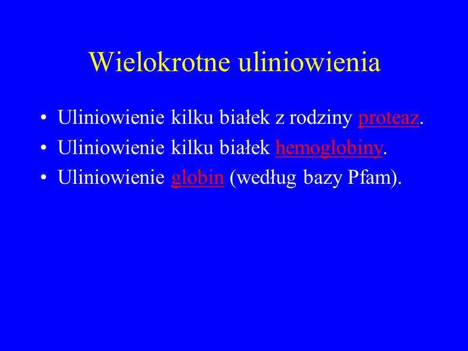 Wielokrotne uliniowienia Uliniowienie kilku białek z rodziny proteaz.proteaz Uliniowienie kilku białek hemoglobiny.hemoglobiny Uliniowienie globin (we