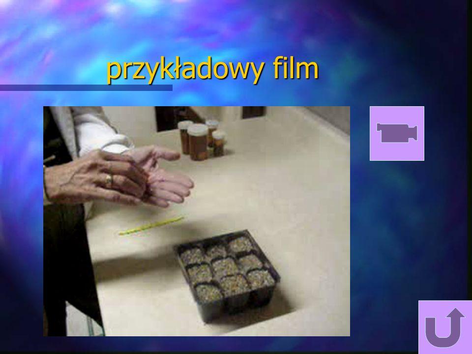 podsumowanie mulitimedia è W prezentacji PowerPoint możemy osadzać praktycznie dowolne obiekty z Windows. è Możemy zautomatyzować prezentację ustalają