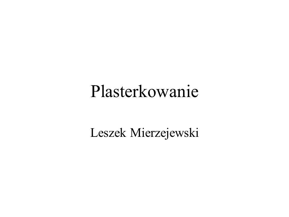 Plasterkowanie Leszek Mierzejewski