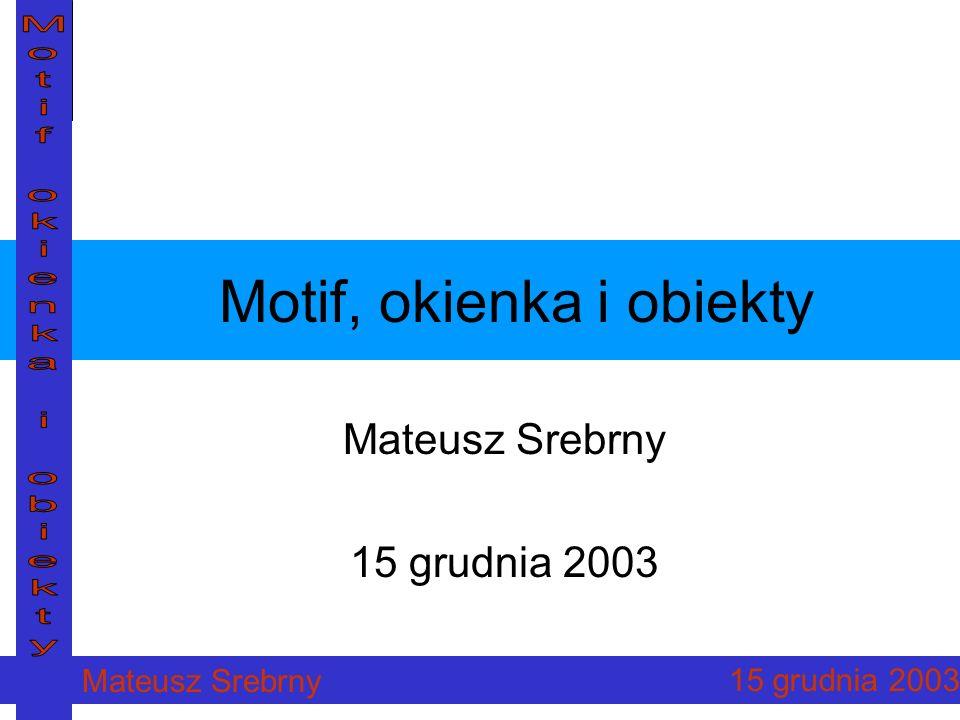 Mateusz Srebrny 15 grudnia 2003 12 Widgety w Motifie Trzy grupy: Gadżety (gadgets, primitives) Manadżery (managers) Powłoki (shells)
