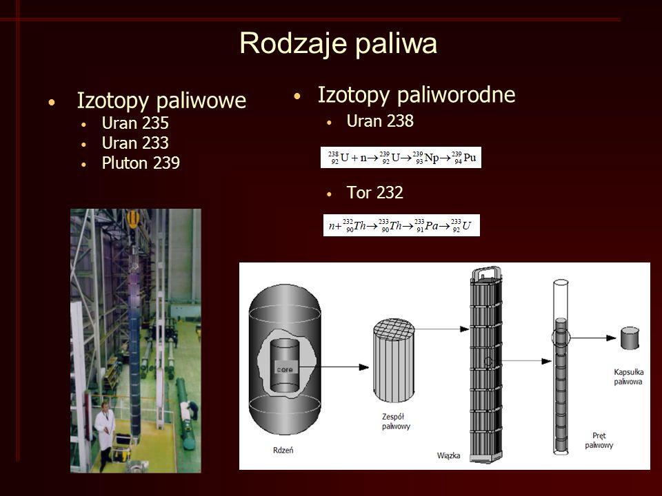 Rodzaje paliwa Izotopy paliworodne Uran 238 Tor 232 Izotopy paliwowe Uran 235 Uran 233 Pluton 239