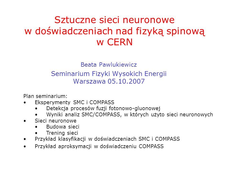 Sztuczne sieci neuronowe w doświadczeniach nad fizyką spinową w CERN Beata Pawlukiewicz Seminarium Fizyki Wysokich Energii Warszawa 05.10.2007 Plan se
