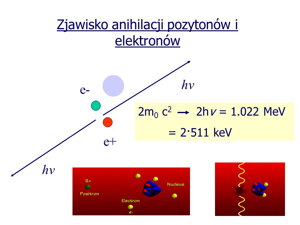 Korekcja osłabienia promieniowania anihilacyjnego w ciele pacjenta Zewnętrzne źródło + 137 Cs, E=662 keV (T 1/2 =30 lat) lub prom.