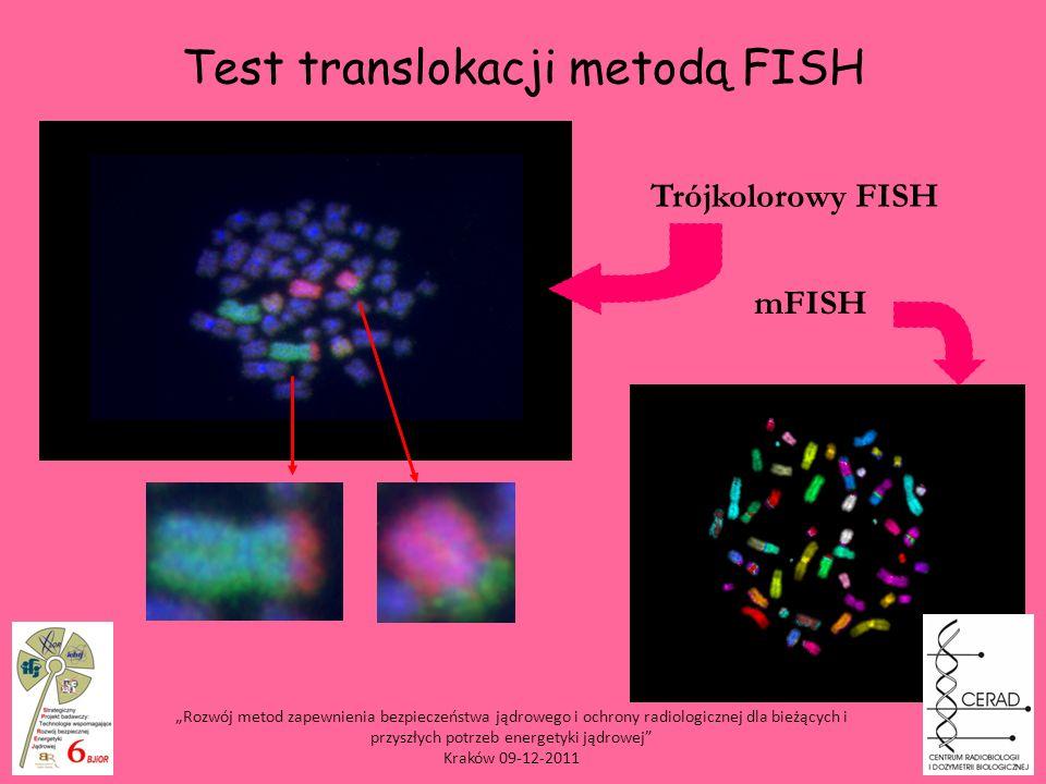 Test translokacji metodą FISH Trójkolorowy FISH mFISH Rozwój metod zapewnienia bezpieczeństwa jądrowego i ochrony radiologicznej dla bieżących i przys