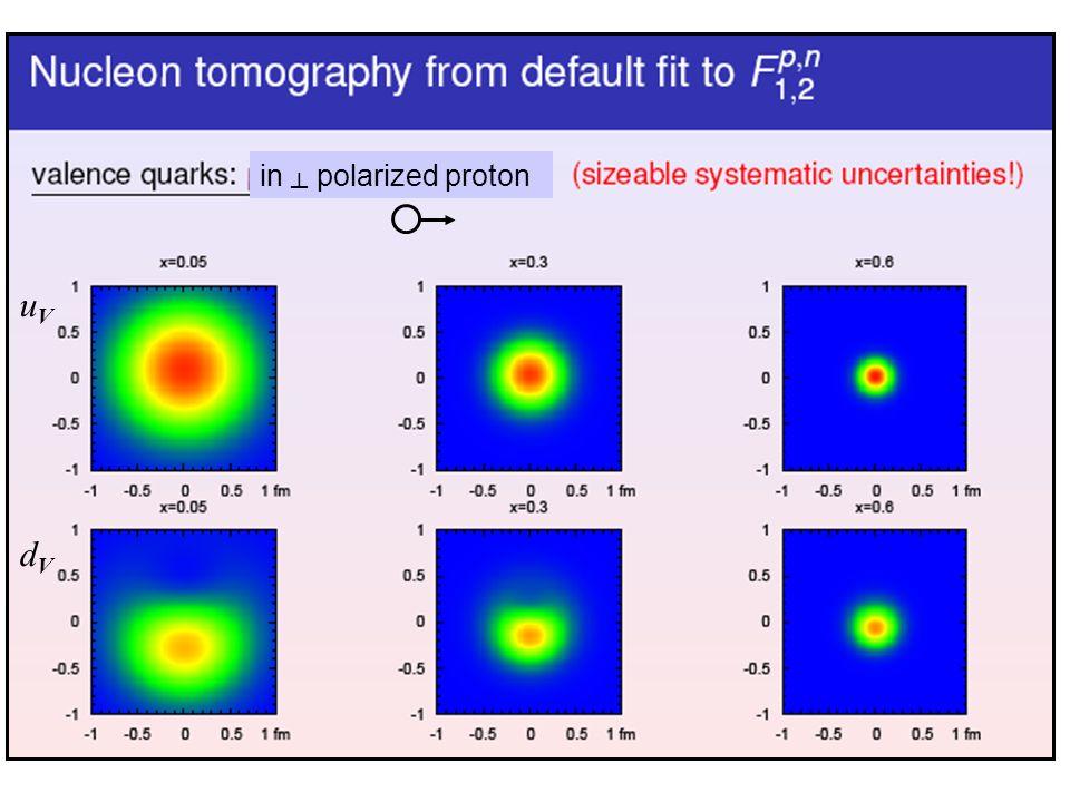 uVuV dVdV in polarized proton