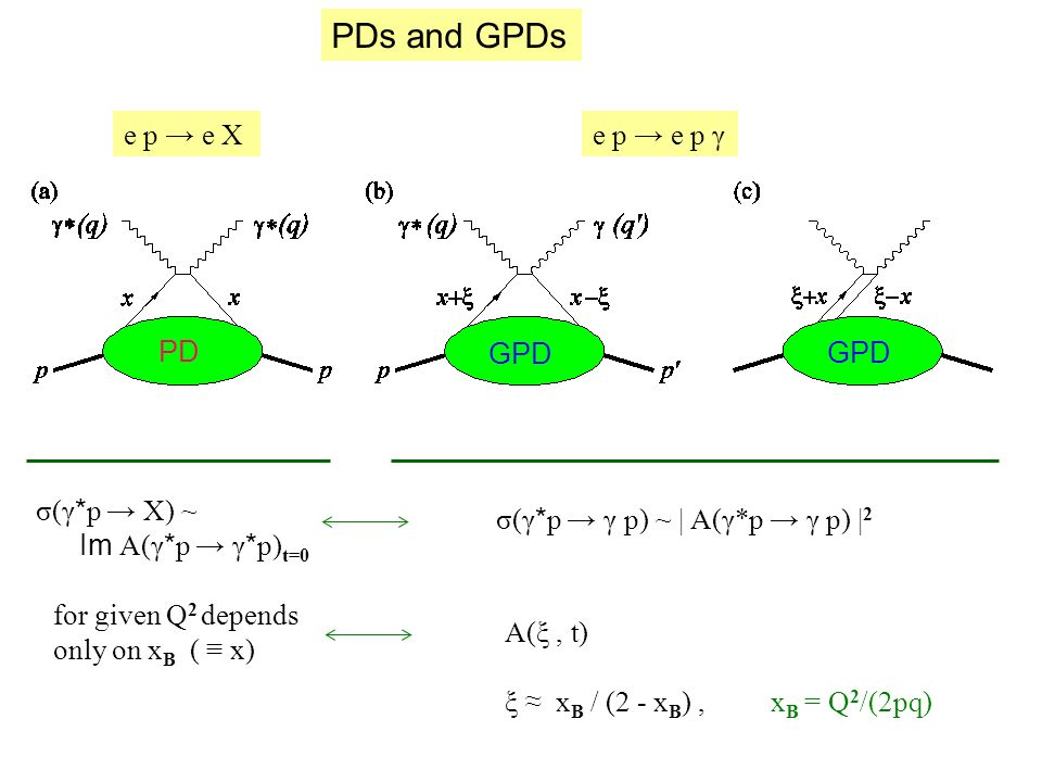 PDs and GPDs PD GPD e p e Xe p e p γ σ(γ * p X) ~ Im A(γ * p γ * p) t=0 for given Q 2 depends only on x B ( x) σ(γ * p γ p) ~ | A(γ*p γ p) | 2 A(ξ, t) ξ x B / (2 - x B ), x B = Q 2 /(2pq)