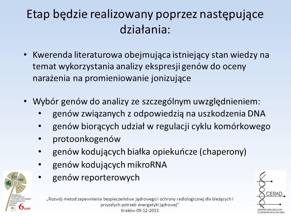 Rozwój metod zapewnienia bezpieczeństwa jądrowego i ochrony radiologicznej dla bieżących i przyszłych potrzeb energetyki jądrowej Kraków 09-12-2011 Etap będzie realizowany poprzez następujące działania: Kwerenda literaturowa obejmująca istniejący stan wiedzy na temat wykorzystania analizy ekspresji genów do oceny narażenia na promieniowanie jonizujące Wybór genów do analizy ze szczególnym uwzględnieniem: genów związanych z odpowiedzią na uszkodzenia DNA genów biorących udział w regulacji cyklu komórkowego protoonkogenów genów kodujących białka opiekuńcze (chaperony) genów kodujących mikroRNA genów reporterowych