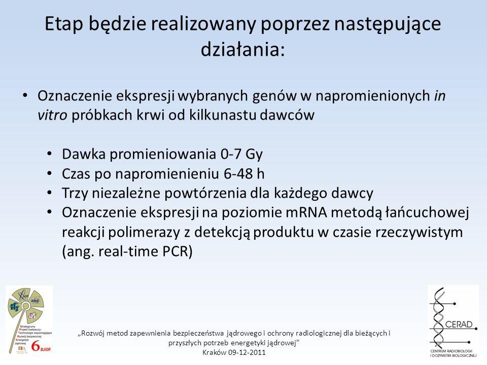 Rozwój metod zapewnienia bezpieczeństwa jądrowego i ochrony radiologicznej dla bieżących i przyszłych potrzeb energetyki jądrowej Kraków 09-12-2011 Etap będzie realizowany poprzez następujące działania: Oznaczenie ekspresji wybranych genów w napromienionych in vitro próbkach krwi od kilkunastu dawców Dawka promieniowania 0-7 Gy Czas po napromienieniu 6-48 h Trzy niezależne powtórzenia dla każdego dawcy Oznaczenie ekspresji na poziomie mRNA metodą łańcuchowej reakcji polimerazy z detekcją produktu w czasie rzeczywistym (ang.