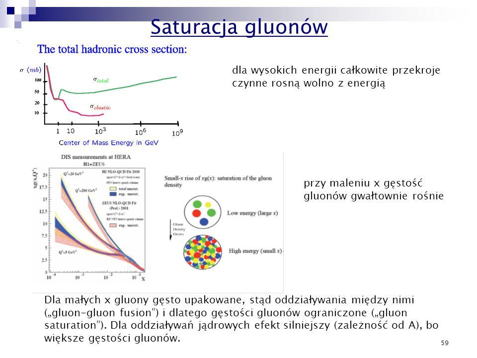 59 dla wysokich energii całkowite przekroje czynne rosną wolno z energią przy maleniu x gęstość gluonów gwałtownie rośnie Dla małych x gluony gęsto up