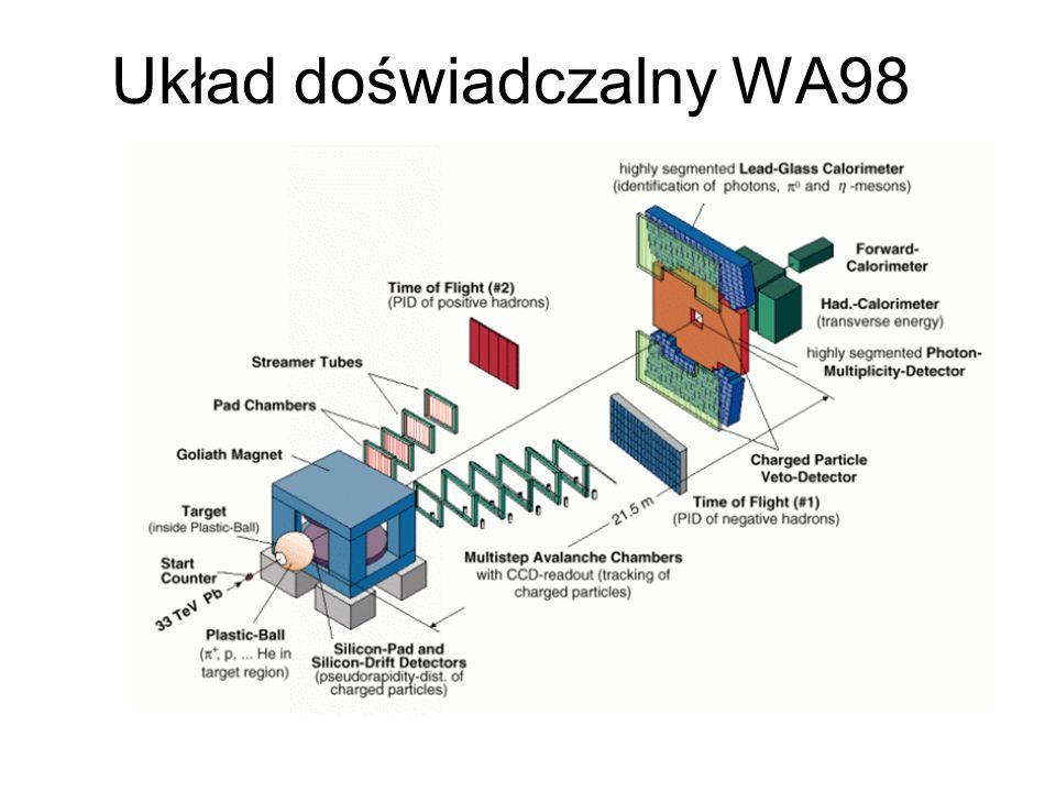 Układ doświadczalny WA98