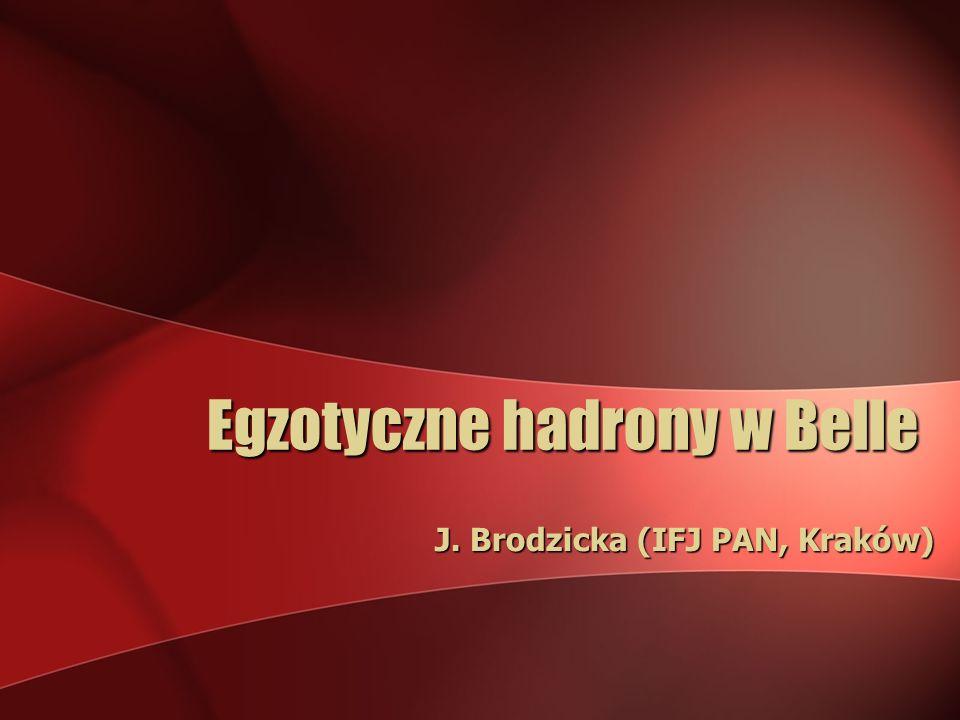 Egzotyczne hadrony w Belle J. Brodzicka (IFJ PAN, Kraków)