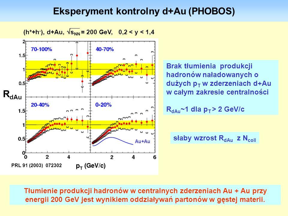 30 Eksperyment kontrolny d+Au (PHOBOS) Brak tłumienia produkcji hadronów naładowanych o dużych p T w zderzeniach d+Au w całym zakresie centralności R