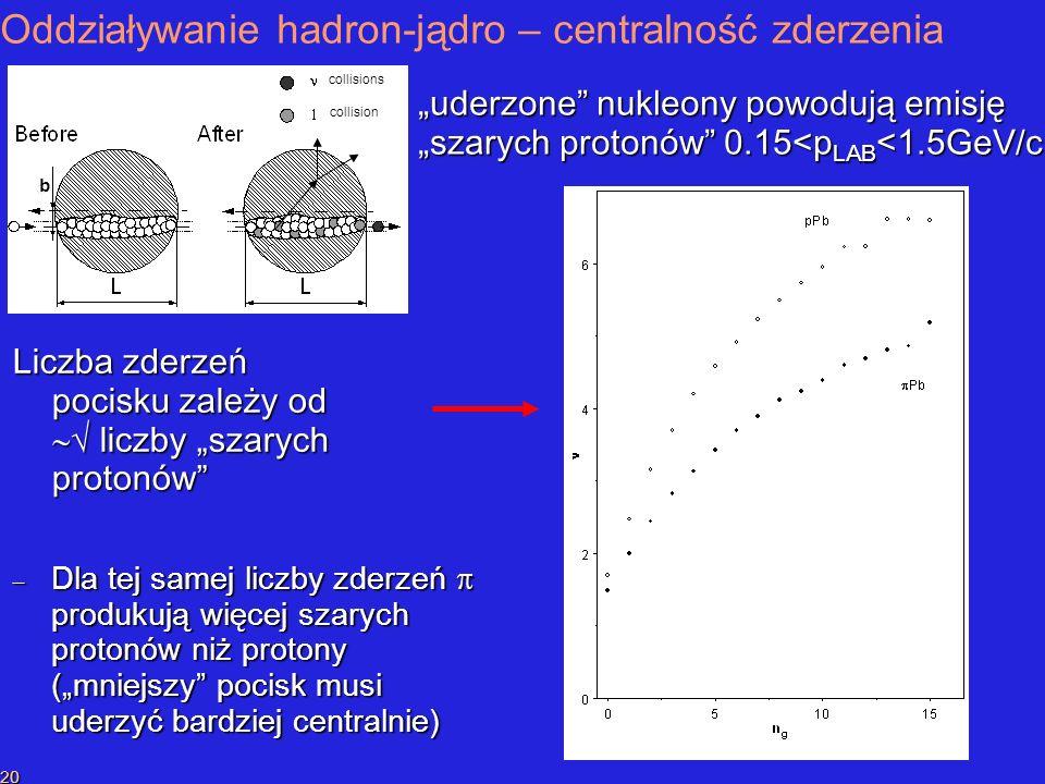 P.SzymańskiPrzekaz liczby barionowej 20 Oddziaływanie hadron-jądro – centralność zderzenia uderzone nukleony powodują emisję szarych protonów 0.15<p LAB <1.5GeV/c collisions b collision Liczba zderzeń pocisku zależy od liczby szarych protonów Dla tej samej liczby zderzeń produkują więcej szarych protonów niż protony (mniejszy pocisk musi uderzyć bardziej centralnie) Dla tej samej liczby zderzeń produkują więcej szarych protonów niż protony (mniejszy pocisk musi uderzyć bardziej centralnie)