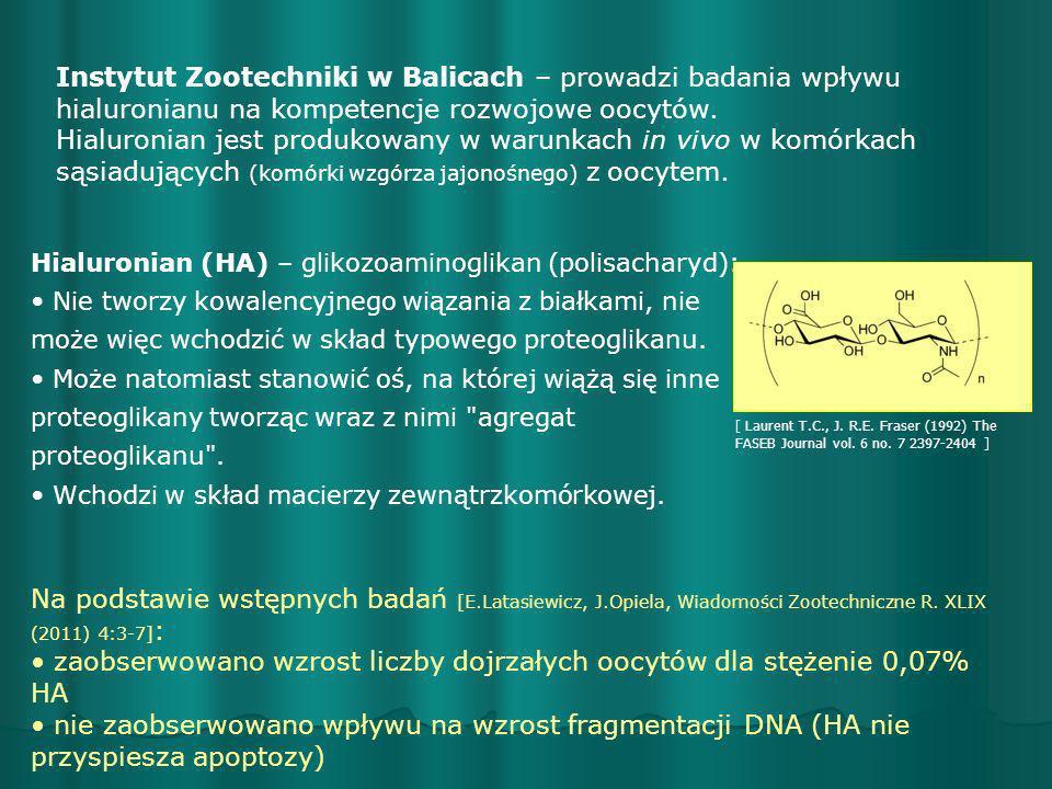 Hialuronian (HA) – glikozoaminoglikan (polisacharyd): Nie tworzy kowalencyjnego wiązania z białkami, nie może więc wchodzić w skład typowego proteogli