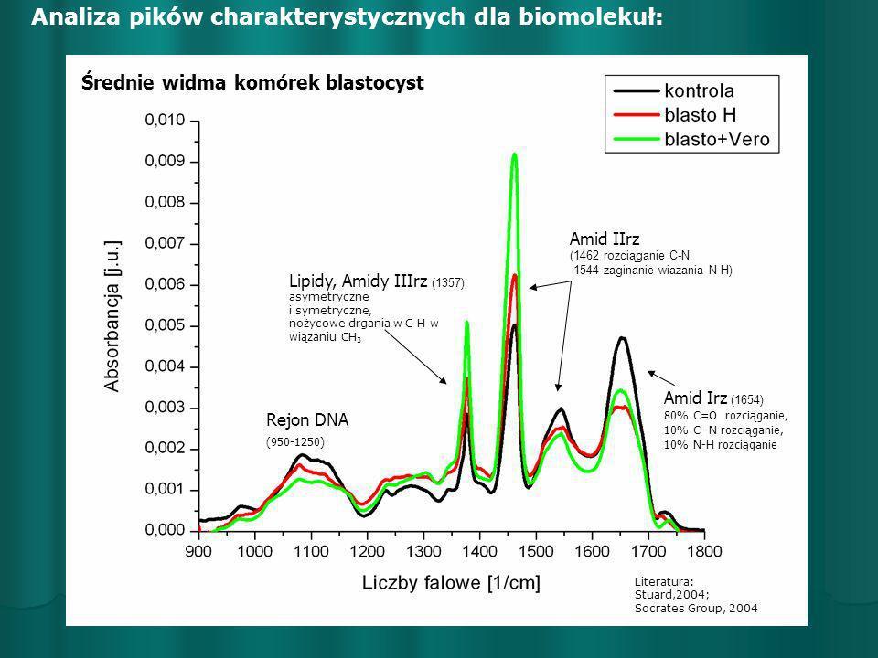 Analiza pików charakterystycznych dla biomolekuł: Amid IIrz (1462 rozciąganie C-N, 1544 zaginanie wiazania N-H) Średnie widma komórek blastocyst Amid