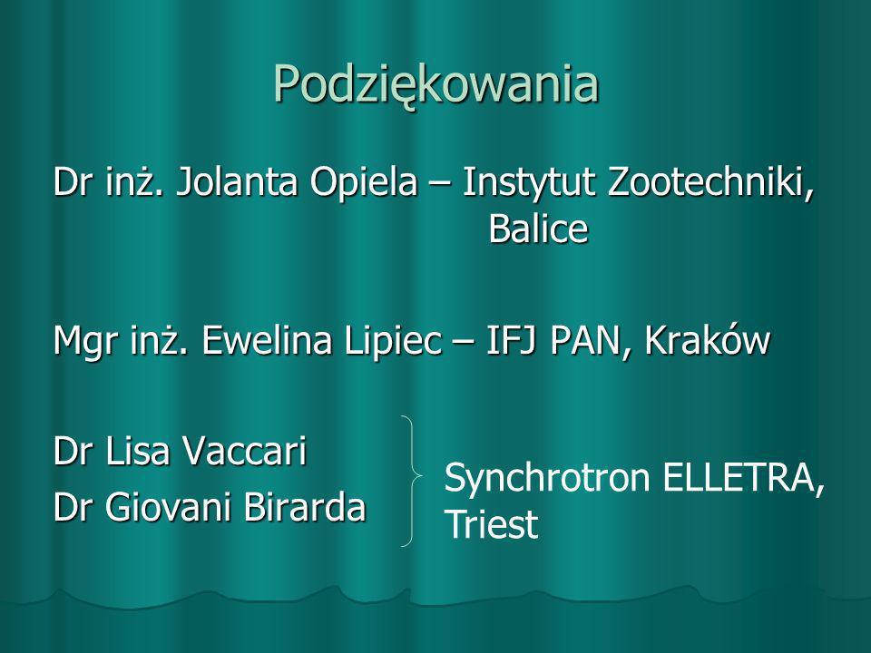 Podziękowania Dr inż. Jolanta Opiela – Instytut Zootechniki, Balice Mgr inż. Ewelina Lipiec – IFJ PAN, Kraków Dr Lisa Vaccari Dr Giovani Birarda Synch