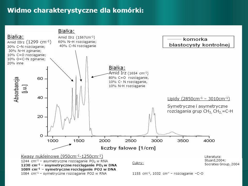 Widmo charakterystyczne dla komórki: Literatura: Stuard,2004; Socrates Group, 2004 Lipidy (2850cm -1 – 3010cm -1 ) Symetryczne i asymetryczne rozciąga
