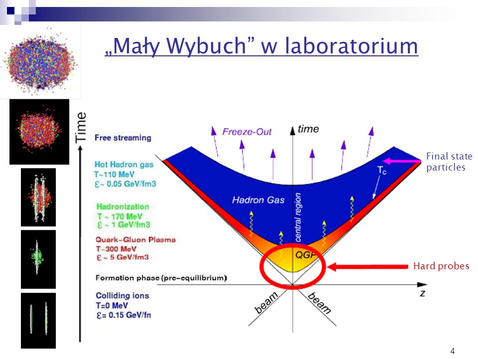 4 Mały Wybuch w laboratorium Final state particles Hard probes