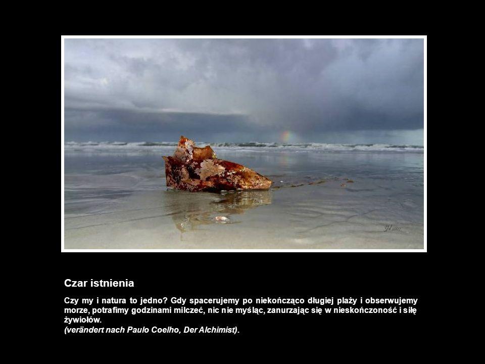 Czar istnienia Czy my i natura to jedno? Gdy spacerujemy po niekończąco długiej plaży i obserwujemy morze, potrafimy godzinami milczeć, nic nie myśląc