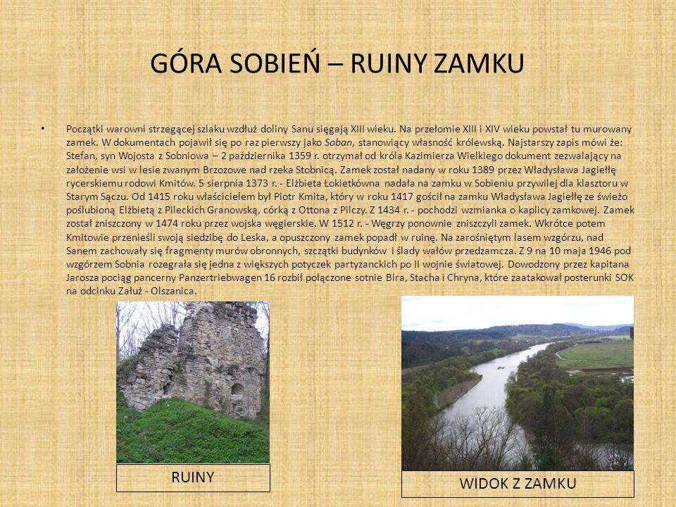 GÓRA SOBIEŃ – RUINY ZAMKU Początki warowni strzegącej szlaku wzdłuż doliny Sanu sięgają XIII wieku.