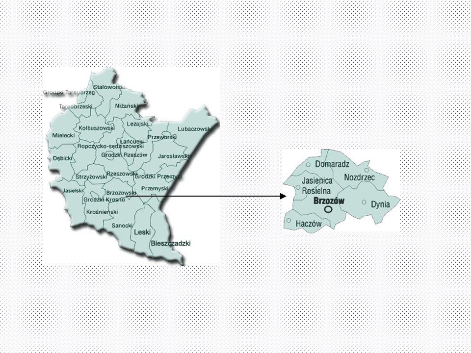 Lokalizacja Powiat brzozowski położony jest na Pogórzu Dynowskim (teren między Wisłokiem, a Sanem na południe od Rzeszowa). Od strony południowej Pogó