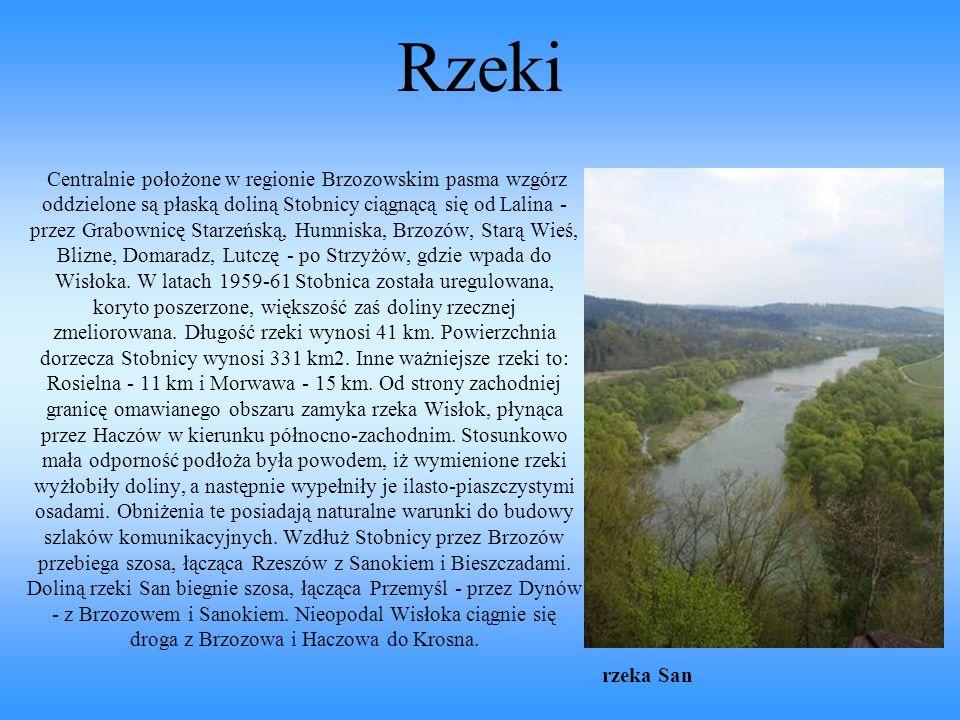 Rzeki Centralnie położone w regionie Brzozowskim pasma wzgórz oddzielone są płaską doliną Stobnicy ciągnącą się od Lalina - przez Grabownicę Starzeńską, Humniska, Brzozów, Starą Wieś, Blizne, Domaradz, Lutczę - po Strzyżów, gdzie wpada do Wisłoka.