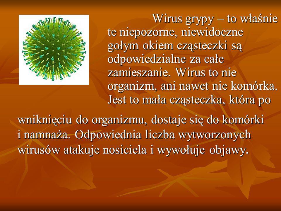 Wirus grypy – to właśnie te niepozorne, niewidoczne gołym okiem cząsteczki są odpowiedzialne za całe zamieszanie. Wirus to nie organizm, ani nawet nie