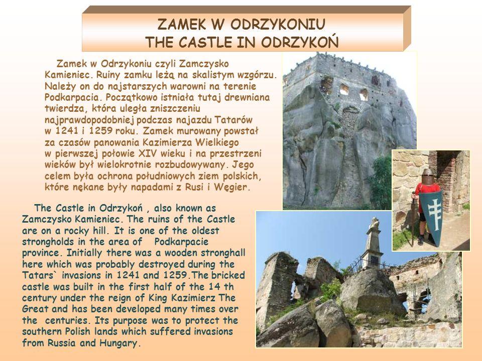 Zamek w Odrzykoniu czyli Zamczysko Kamieniec. Ruiny zamku leżą na skalistym wzgórzu. Należy on do najstarszych warowni na terenie Podkarpacia. Początk