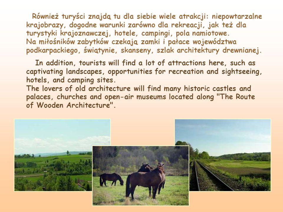 Również turyści znajdą tu dla siebie wiele atrakcji: niepowtarzalne krajobrazy, dogodne warunki zarówno dla rekreacji, jak też dla turystyki krajoznaw