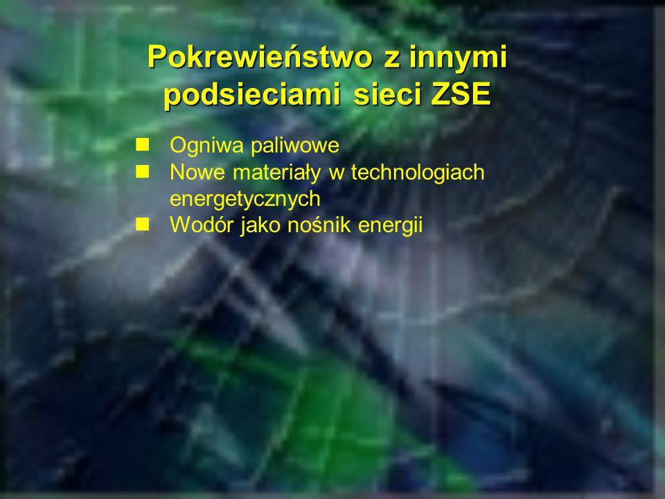 Pokrewieństwo z innymi podsieciami sieci ZSE Ogniwa paliwowe Nowe materiały w technologiach energetycznych Wodór jako nośnik energii