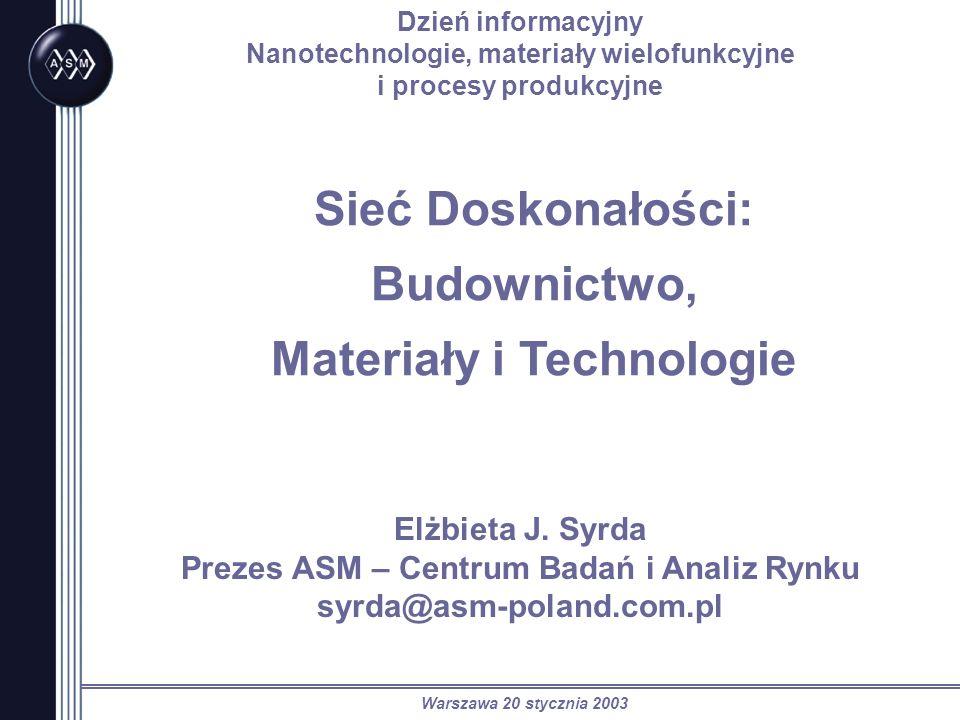 Warszawa 20 stycznia 2003 Sieć Doskonałości: Budownictwo, Materiały i Technologie Dzień informacyjny Nanotechnologie, materiały wielofunkcyjne i proce