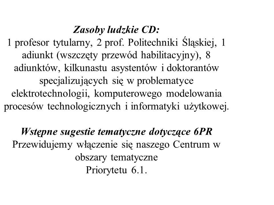 Zasoby ludzkie CD: 1 profesor tytularny, 2 prof. Politechniki Śląskiej, 1 adiunkt (wszczęty przewód habilitacyjny), 8 adiunktów, kilkunastu asystentów