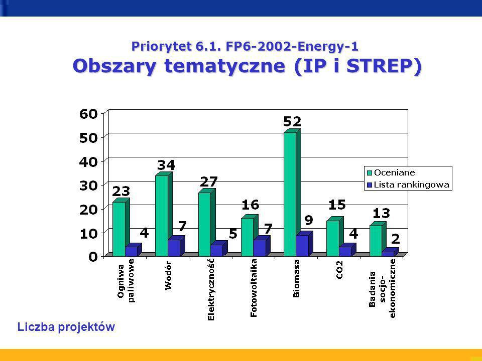Priorytet 6.1. FP6-2002-Energy-1 Obszary tematyczne (IP i STREP) Liczba projektów