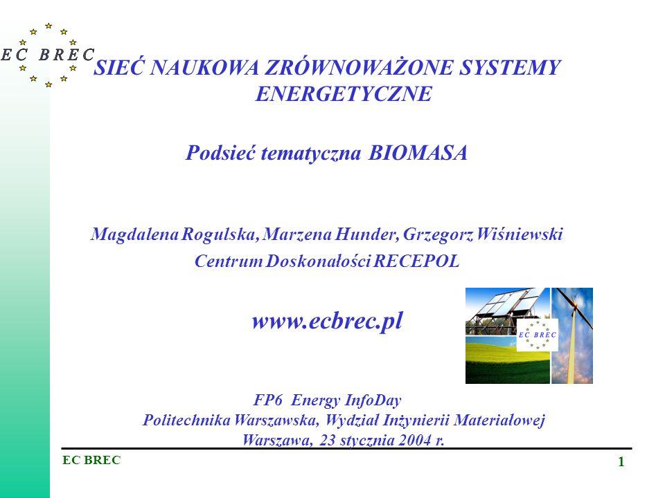 EC BREC 12 DALSZE INFORMACJE Grzegorz Wiśniewski, dyrektor EC BREC grewis@ibmer.waw.pl Dr Magdalena Rogulska, koordynator podsieci tematycznej BIOENERGIA mrogul@ibmer.waw.pl