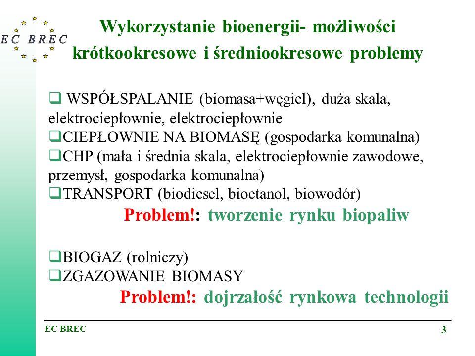 EC BREC 3 Wykorzystanie bioenergii- możliwości krótkookresowe i średniookresowe problemy WSPÓŁSPALANIE (biomasa+węgiel), duża skala, elektrociepłownie