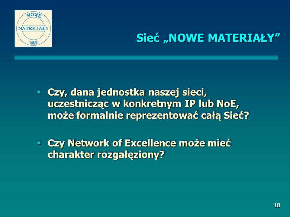18 Czy, dana jednostka naszej sieci, uczestnicząc w konkretnym IP lub NoE, może formalnie reprezentować całą Sieć.