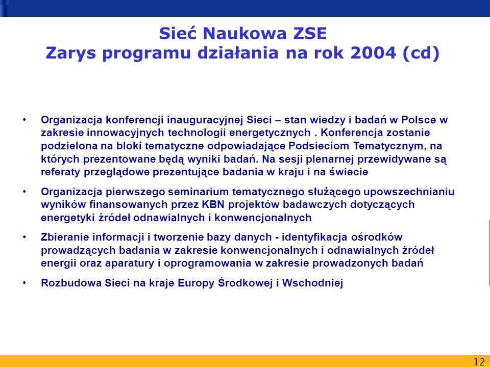 12 Sieć Naukowa ZSE Zarys programu działania na rok 2004 (cd) Organizacja konferencji inauguracyjnej Sieci – stan wiedzy i badań w Polsce w zakresie i