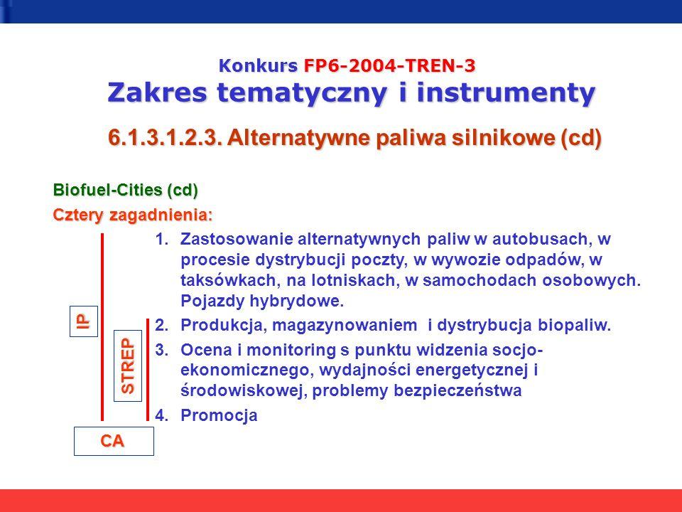 Konkurs FP6-2004-TREN-3 Zakres tematyczny i instrumenty 6.1.3.1.2.3. Alternatywne paliwa silnikowe (cd) Biofuel-Cities (cd) Cztery zagadnienia: 1.Zast