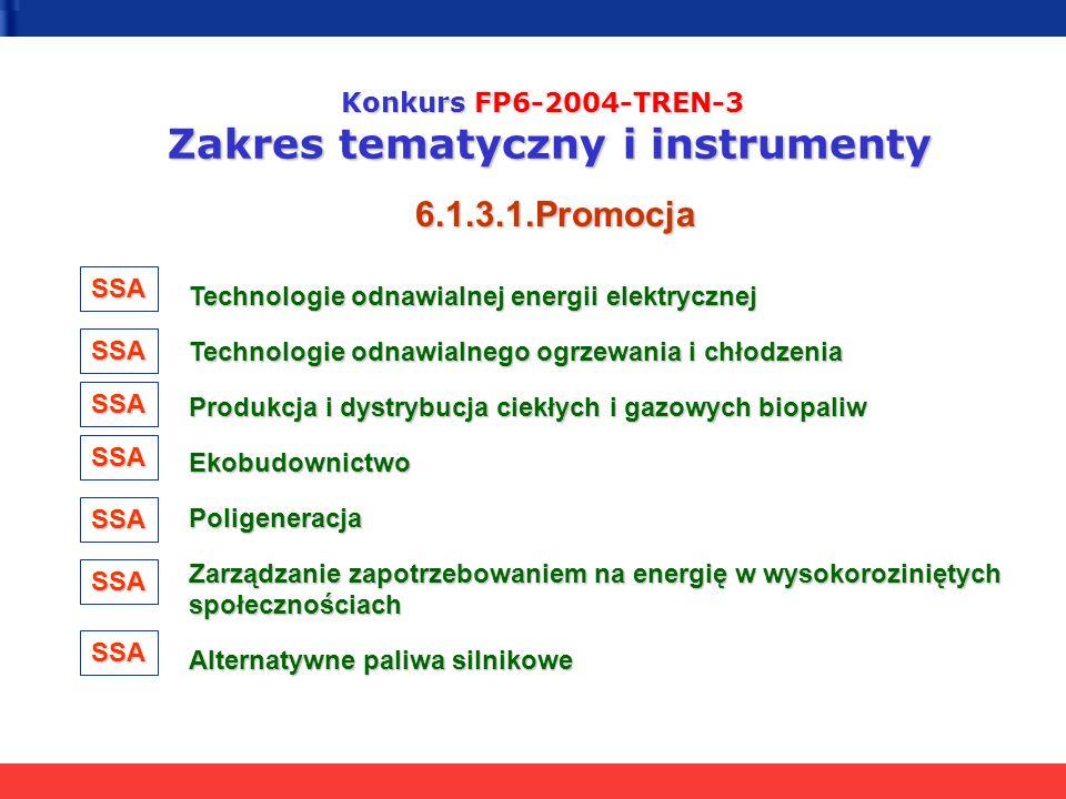 Konkurs FP6-2004-TREN-3 Zakres tematyczny i instrumenty 6.1.3.1.Promocja Technologie odnawialnej energii elektrycznej Technologie odnawialnej energii