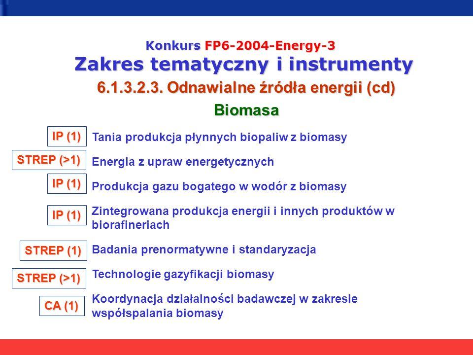 Konkurs FP6-2004-Energy-3 Zakres tematyczny i instrumenty 6.1.3.2.3. Odnawialne źródła energii (cd) Biomasa Tania produkcja płynnych biopaliw z biomas