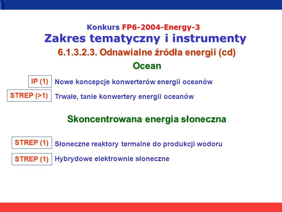 Konkurs FP6-2004-Energy-3 Zakres tematyczny i instrumenty 6.1.3.2.3. Odnawialne źródła energii (cd) Ocean Nowe koncepcje konwerterów energii oceanów T