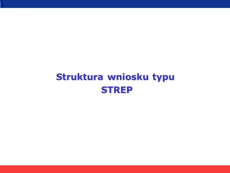 Struktura wniosku typu STREP