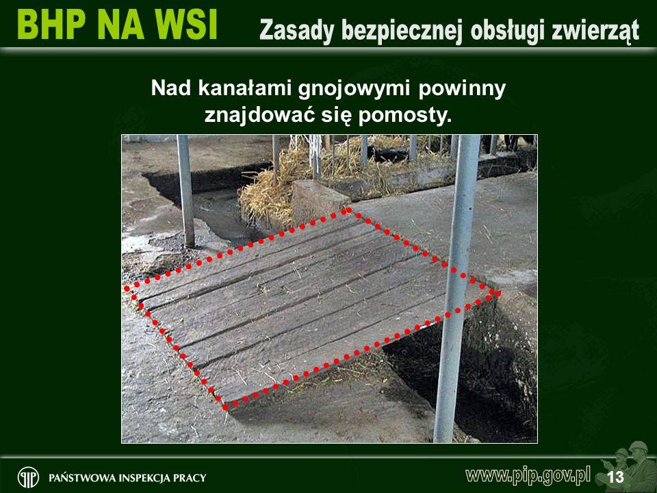 13 Nad kanałami gnojowymi powinny znajdować się pomosty.